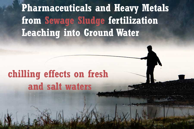 sewage-sludge-fertilization-effects-on-ground-water-fresh-salt-waters-pharmaceuticals-leaching-heavy-metals